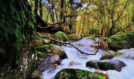 Seven reasons why autumn is the very best season in Spain